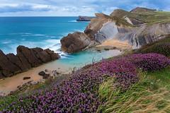 SEASCAPES. (roberrodriguez1) Tags: paisaje mar olas flores nubes arena rocas rocks sea landscape water flowers seascapes ngc