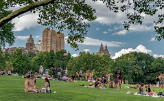 Summer in The city (welles1941) Tags: sheepmeadow centralpark newyork summertime 2017 nikond500 polarizer