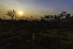 Sunset Brush Fire (Keith Kelly) Tags: anlongklong asia brushfire cambodge cambodia kh kampuchea keithkelly krakor pursatprovince sky southeastasia clouds colors country countryside farmland field fire grass keithakelly rural sunset trees pouthisat