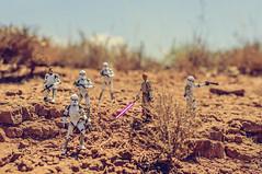 Jedi Mace Windu & Elite Corps Clone Troopers (Oscar EM) Tags: elitecorpsclonetroopers jedimacewindu mace windu eliteclontrooper troopers clones clons starwars hasbrostarwars toyphotography hasbro blackseries