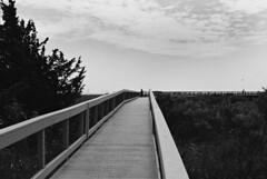 R2-019-8 (David Swift Photography Thanks for 22 million view) Tags: davidswiftphotography newjersey southjersey forsythewildliferefuge brigantinewildliferefuge bridges walkway marsh refuge scenic scenicview nature 35mm film nikonfm2
