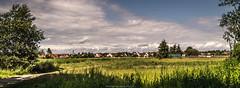 Away from the hustle and bustle (Robert Benatzky Picture) Tags: wietze gemeinde natur nature green blue grün blau bluesky blauerhimmel clouds wolken sonnenschein sunshine panorama schatten shadow robertbenatzkypicture beautiful