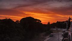 Stunning Sunset (tiagoalmeidaph) Tags: photography sunset stunningsunsets portugal orange goldenhour clouds summer trees hdrphotography bracketing