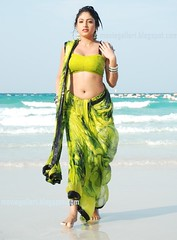 Indian Actress Haripriya Hot Sexy Images Set-1  (4)
