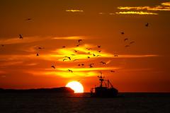 Sonnenuntergang am Streckelsberg Koserow (Traumlinse) Tags: sonnenuntergang sonne wolken meer möwen schiff licht schatten sunset sun clouds sea seagull ship light shadow usedom koserow swinemünde