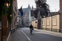 Morning in Brugge (fru.gru) Tags: brugge bruges brugia oldcity middle age belgium belgia bike morning light olympus micro43