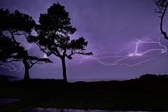 DSCF2996 (Martin P Perry) Tags: lightning storm sea needles trees strike samyang f2 12mm samyangf212mm