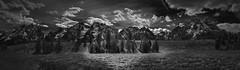 Sagebrush Flats (Grand Teton National Park) (♡✌ Kᵉⁿ Lᵃⁿᵉ ✌♡) Tags: elk geo:lat=4379516787 geo:lon=11068862915 geotagged moose unitedstates usa bw blackwhite blackandwhite bnw grandtetonnationalpark grandtetons httpsenwikipediaorgwikigrandtetonnationalpark landscape monochrome mountains nationalpark nationalparkservice np nps sagebrush sagebrushflats southcentralrockies tetoncounty tetonmountainrange touristattraction travelphotography usnationalpark usnationalparkservice unitedstatesnationalpark wy wyoming