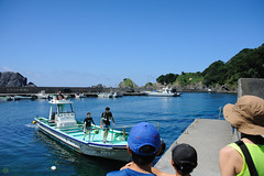 20170715-DS7_4306.jpg (d3_plus) Tags: 南伊豆 日本 scenery aiafnikkor28105mmf3545d d700 nature drive fish marinesports apnea underwater 静岡 aiafzoomnikkor28105mmf3545d 28105mmf3545af sea 路上 southizu minamiizu 自然 漁港 景色 海 魚 伊豆 watersports sky 風景 スキンダイビング 28105mmf3545 japan ツーリング ニコン 水中 plant skindiving nikon 静岡県 素潜り port street nikkor 28105mmf3545d 28105 28105mm ドライブ 植物 281053545 snorkeling zoomlense nikond700 touring diving 息こらえ潜水 ズーム 空 izu shizuoka nikon1 bloom fishingport シュノーケリング マリンスポーツ