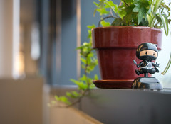 17: Solar Ninja