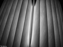 Pleats - Explored 22 July 2017 (Thad Zajdowicz) Tags: zajdowicz santabarbara california availablelight lightroom travel leica digital abstract lines pleats paper light dark shadows monochrome blackandwhite bw black white indoor background minimal minimalism pattern texture