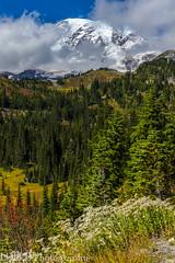 NT3.0057-MRNP160925_48772 (LDELD) Tags: mountrainier mountrainiernationalpark fall roadtoparadise washington paradisevalley mountain clouds