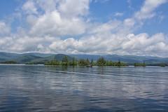Sharing the lake
