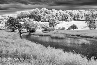 The Aln River, Northumberland