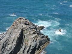 P1020587 (snapshots_of_sacha) Tags: sea atlantic atlantik meer beach algarve portugal landscape nature wild