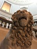 Early 2nd Century AD Lion - Funerary Monument (Sandra Lee Hall) Tags: art sculpture lion 2ndcenturyad funerary monument statue mausoleum halicarnassus roman ancient museum naples italy