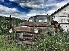 rust in the heartland.. (Aces & Eights Photography) Tags: abandoed abandonment decay ruraldecay oldtruck abandonedtruck