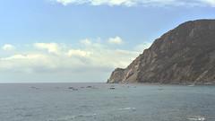 Cinque Terre (Fabrice1965) Tags: italie ligurie méditerranée laspezia portovenere cinqueterre monterosso vernazza corniglia manarola riomaggiore