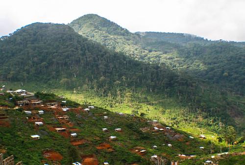 Landscape in Sierra Leone