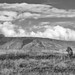 The Lions of Ngorongoro Crater