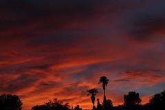 Sunset July 26 2017 #52 (Az Skies Photography) Tags: sun set sunset dusk twilight nightfall cloud clouds sky skyline skyscape skycandy skyfire red orange yellow gold golden salmon black canon eos 80d canoneos80d eos80d rio rico arizona az riorico rioricoaz arizonasky arizonaskyline arizonaskyscape arizonaskycandy arizonaskyfire july 26 2017 july262017 72617 7262017