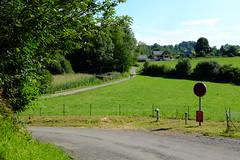 En voilà 2 au bout de la route (alainlecroquant) Tags: coteauxdesaintpédebigorre saintpédebigorre coteaux abbatiale palombière randonnée hautespyrénées vaches lavoir ferme cheval vtt fleurs