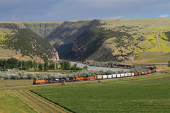Escaping Wind River Canyon (Moffat Road) Tags: bnsf freight canyon river curve es44dc ge minnesela thermopolis wyoming bighornriver windrivercanyon train railroad locomotive bnsfcaspersubdivision wy 7721