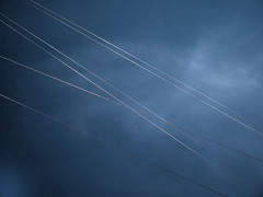 Supporters (Rantz) Tags: australia australiancapitalterritory cableicious cablelicious cables canberra dikaiosyne rantz parkes au