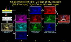 Digital replacement (emulation) of Ektachrome / Aerochrome colour infrared film - Single-image method (Infrachrome) Tags: digitalinfrared infrared colourinfrared irg cir eir ektachrome aerochrome dcs 460cir 420cir kodak