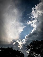 196/365 - Storm Clouds