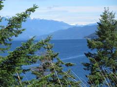 Screening the view (jamica1) Tags: kootenay lake bc british columbia canada
