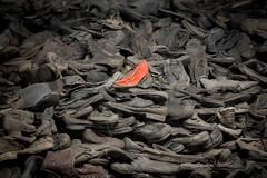 Lady shoe at Auschwitz (mpakarlsson) Tags: auschwitz concentration camp poland krakow blackwhite bw history nazi birkenau world war ii selection stop shoe focus red lost