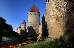Tallin - Estonia - Muralla medieval (Garciamartín) Tags: fortaleza fortificación medieval muralla monumento torre castillo europa estonia tallin paísesbálticos garciamartín nino