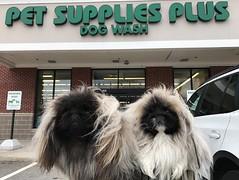 Pet Grooming San Antonio (Petsuppliesstore) Tags: pet stores in san antonio products supplies