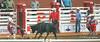 DSC02112 (♥ MissChief Photography ♥) Tags: calgarystampede2017 calgary canada horses bull cowboy bullfighters
