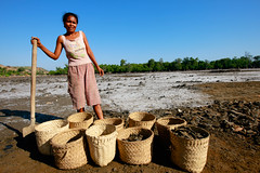 Salt making in Ulmera - 17-09-09-1 (undptimorleste) Tags: timorleste hard labor pans salt seaseaslat ulmera woman women work