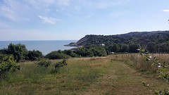 20170713_165146 (Sweet Mango 1965) Tags: hastings country park