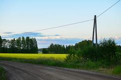 Evening light (Villikko) Tags: evening ilta summer kesä finland landscape sunset auringonlasku nikon nikond5100 d5100