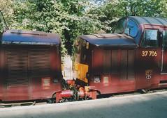 "West Coast Railway Company Class 37/7, 37706 & Class 37/5, 37516 (37190 ""Dalzell"") Tags: wcrc westcoastrailwayscompany maroondip ee englishelectric growler tractor heavyweight class37 class375 37516 class377 37086 d6786 37706 37016 d6716 spitfirerailtours thepurbeckgrowler railtour chartertrain swanagerailway swanage"