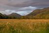 DSCF2520.jpg (diego.pinedo.escribano) Tags: knoydart country scotland europe uk