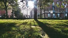20170717_185339-02 (St Peter Mancroft Church Cemetery - Norwich - UK) (suzyhazelwood) Tags: norwich norfolk graveyard st peter mancroft church a6000 burial ground city cities uk sunlight samsung mobile phone cell