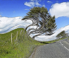 """It was a wild and windy day ...."" (Elisafox22 slowly catching up again!) Tags: elisafox22 hss sliderssunday texture sliding roadside aberdeenshire scotland trees road tree colours sky clouds postprocessing photomanipulation ipad photoshop textured photomanipulated patterns elisaliddell©2017 artdigital"