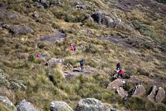 Trekking | Pico dos Marins | 15/07/2017 (luizpelizzer) Tags: trekking escalada trilha pico marins