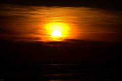 Couché de soleil à Oléron (Lô65) Tags: canon7d canon 7d 2017 couchédesoleil sigma sigma120400 soleil sun sunset orange océan océanatlantique reflet