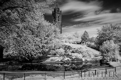 _MG_0226 (Flyfifer Photography) Tags: blackandwhite brandonhill bristol cabottower england greatbritain infrared places unitedkingdom