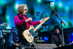TomPetty and the Heartbreakers-14 (Indie Images) Tags: barclaycardbritishsummertimefestival hydepark indieimagesphotography outsideorganisation tompetty tompettyandtheheartbreakers gigjunkies livemusic nikon