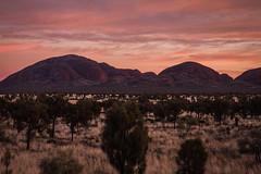 Kata Tujata Sunrise Uluru-23