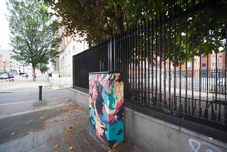 DUBLIN CANVAS STREET ART BOLTON STREET [TODAY I REVISITED MY CANON 1Ds MKIII And I WAS DISAPPOINTED]-130890