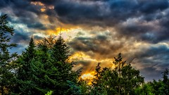 Sunbeam (Daniel Vierheilig) Tags: sunset sunbeam sun weather goldenhour evening mothernature nature cloudy sky photography canon canon6d beautiful amazing