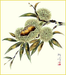 Japanese chestnut (Japanese Flower and Bird Art) Tags: flower chestnut castanea crenata fagaceae koho fujiwara nihonga shikishi japan japanese art readercollection